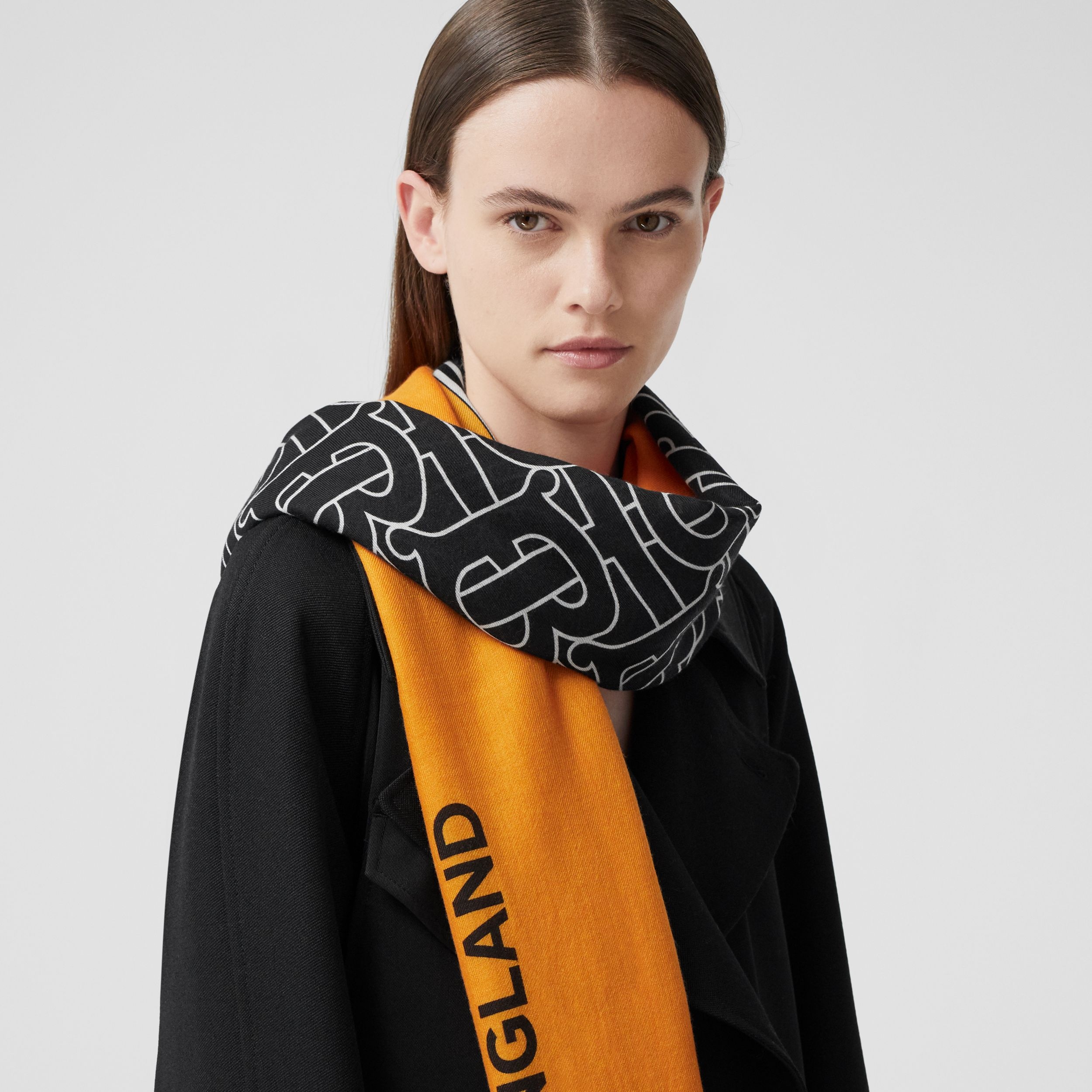 Monogram Print Striped Lightweight Cashmere Scarf in Citrus Yellow | Burberry - 3