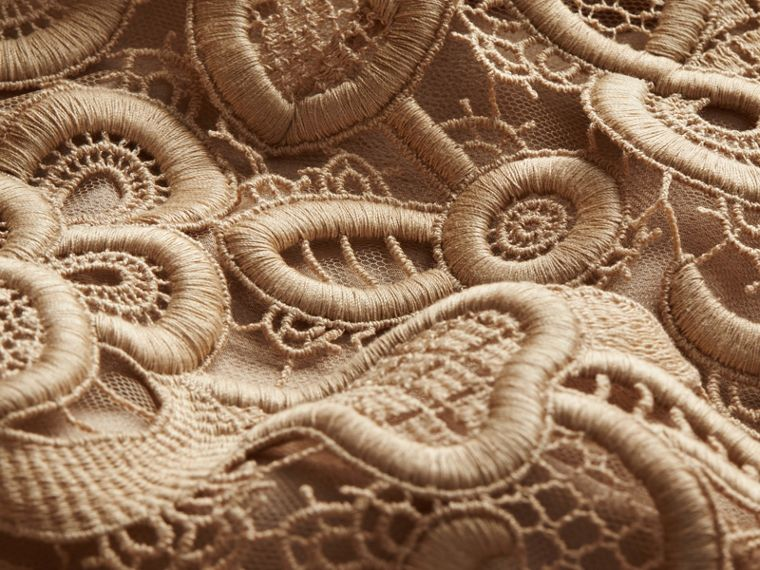 Nude Online Exclusive Swiss Lace Shift Dress - cell image 1