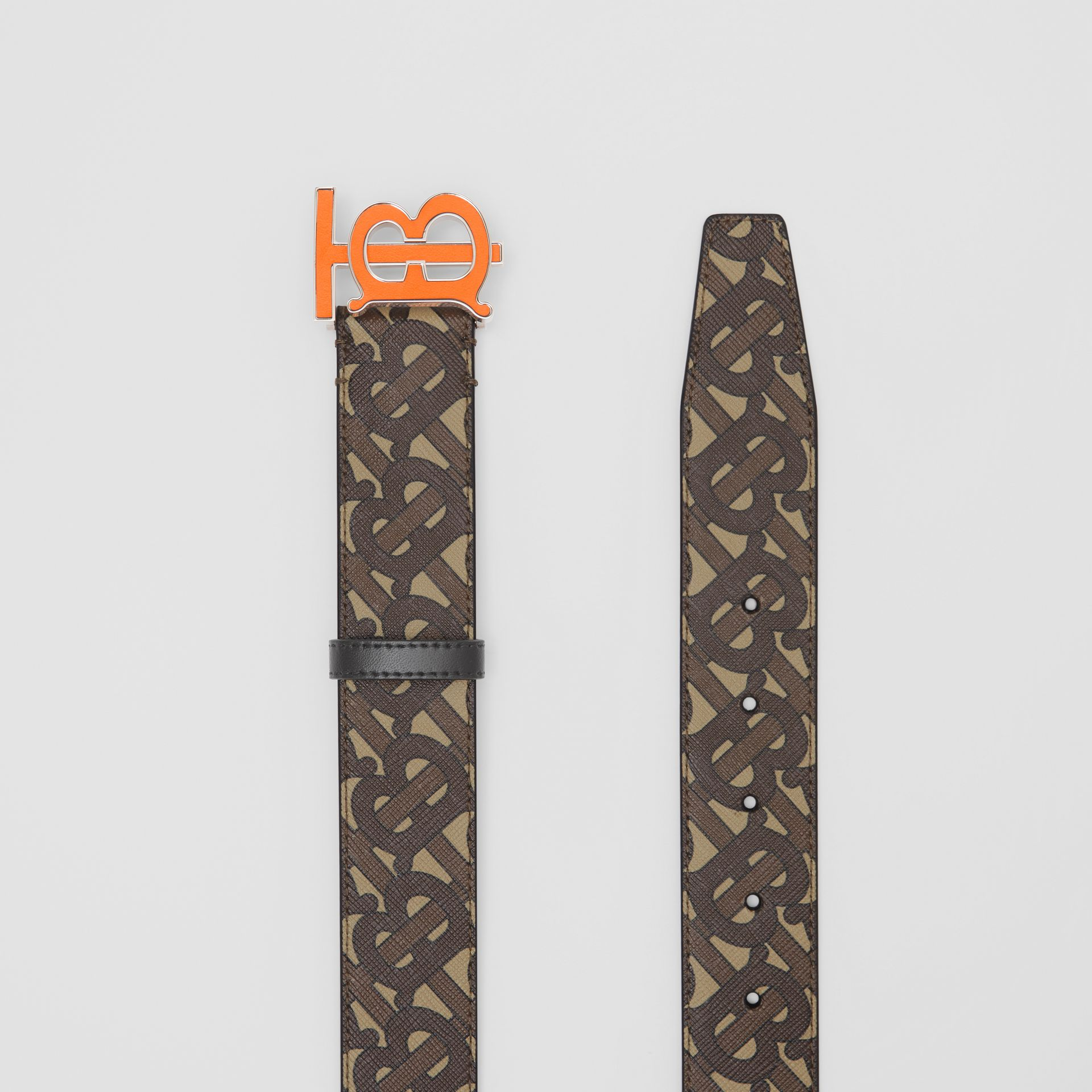 Monogram E-canvas Belt in Bridle Brown - Men | Burberry United Kingdom - gallery image 5