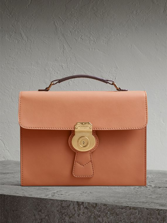 The DK88 Portfolio Case in Pale Clementine