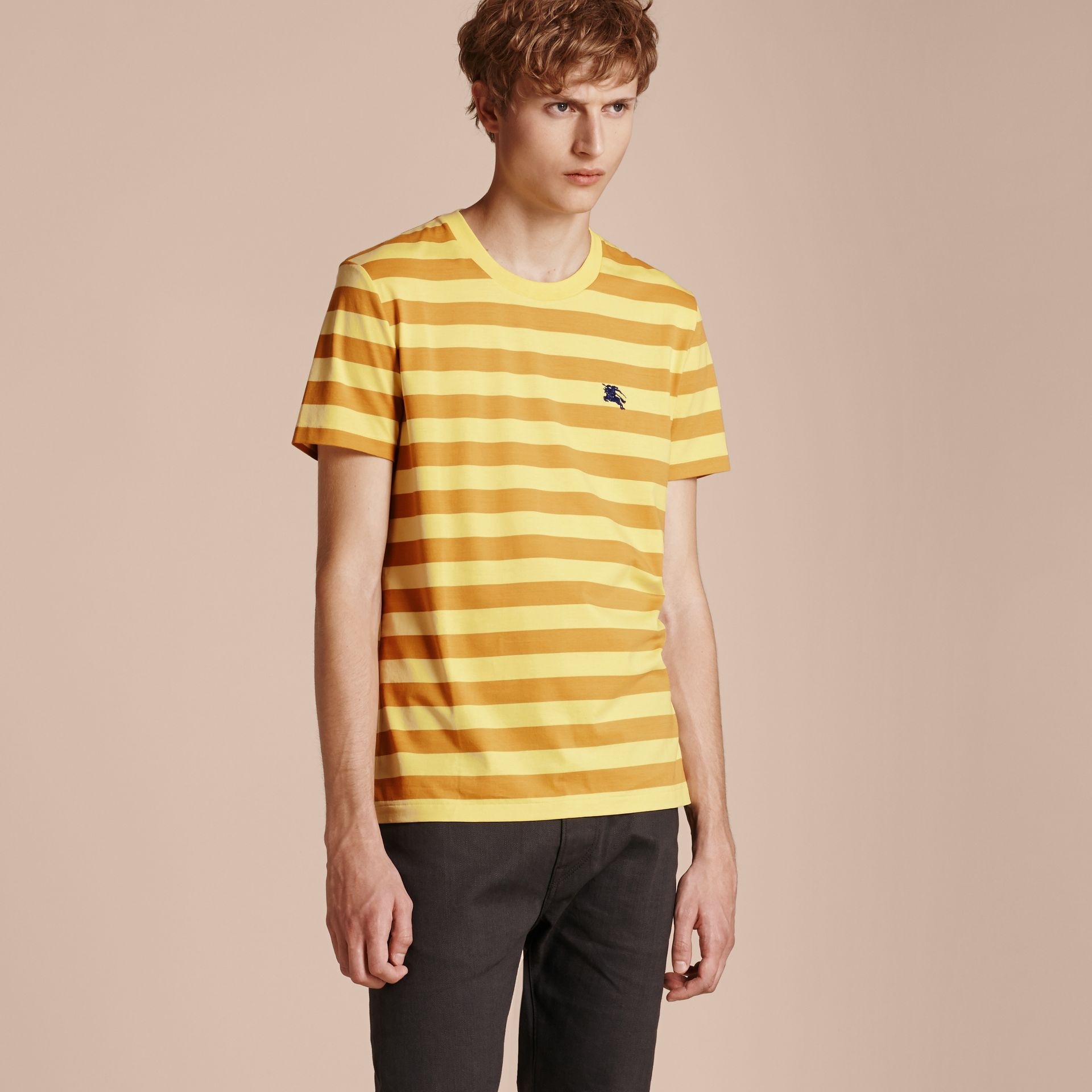 Striped Cotton T-Shirt in Pale Yellow/ochre Yellow - gallery image 6