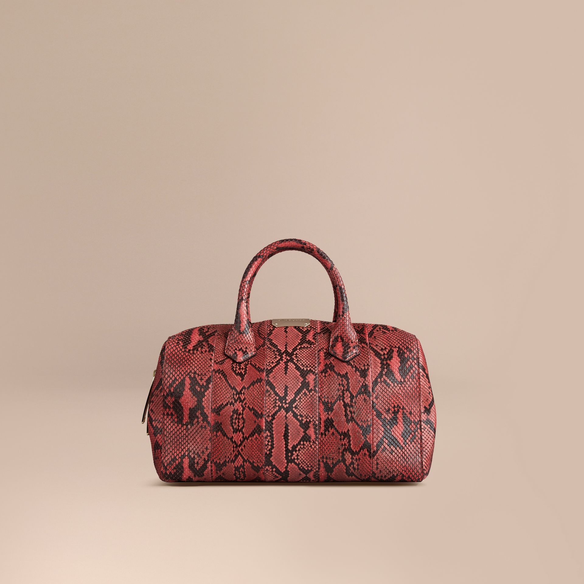 Peony The Medium Alchester in Python - gallery image 1