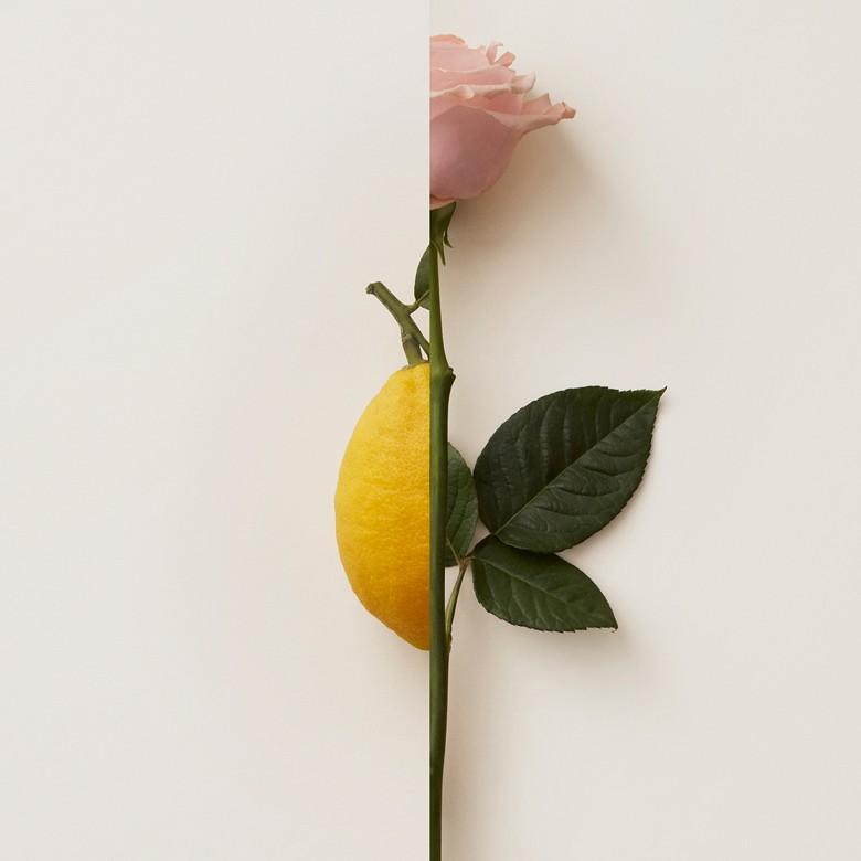 Burberry - Eau de Parfum MyBlush 50ml - 4