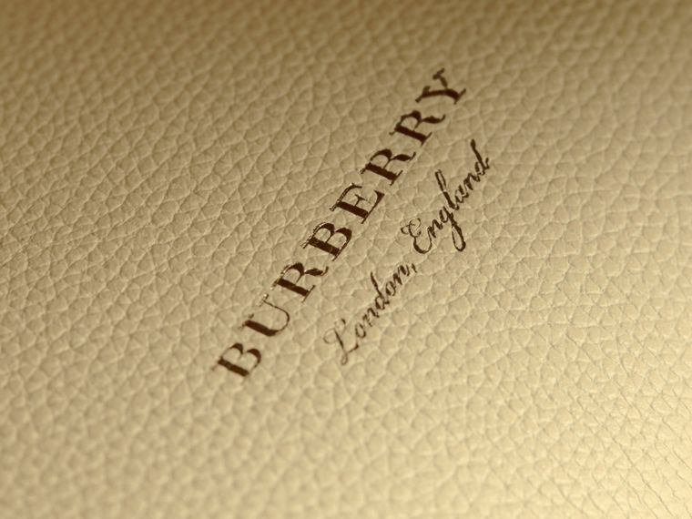 The Small Banner in Leather and House Check in Camomile Yellow - Women | Burberry - cell image 1