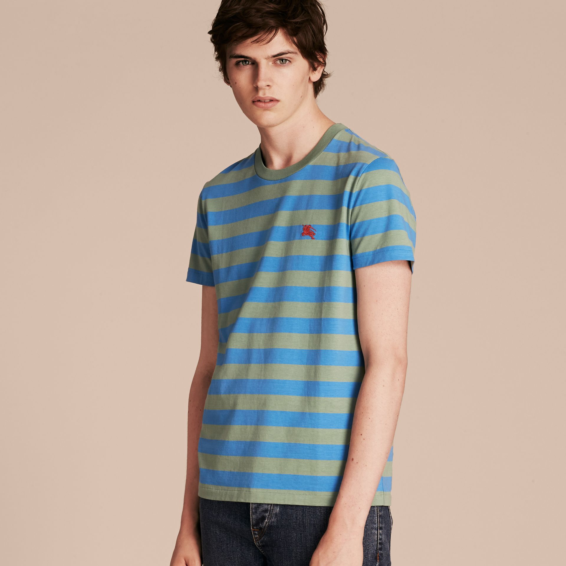 Striped Cotton T-Shirt Eucalyptus Green/chalk Blue - gallery image 6