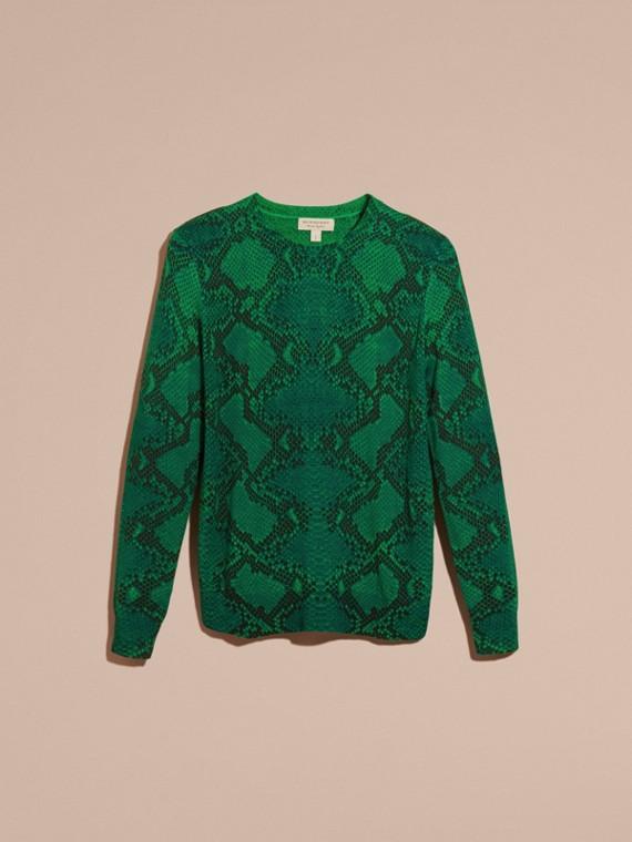 顏料綠 格紋裝飾蟒紋美麗諾羊毛套頭衫 顏料綠 - cell image 3