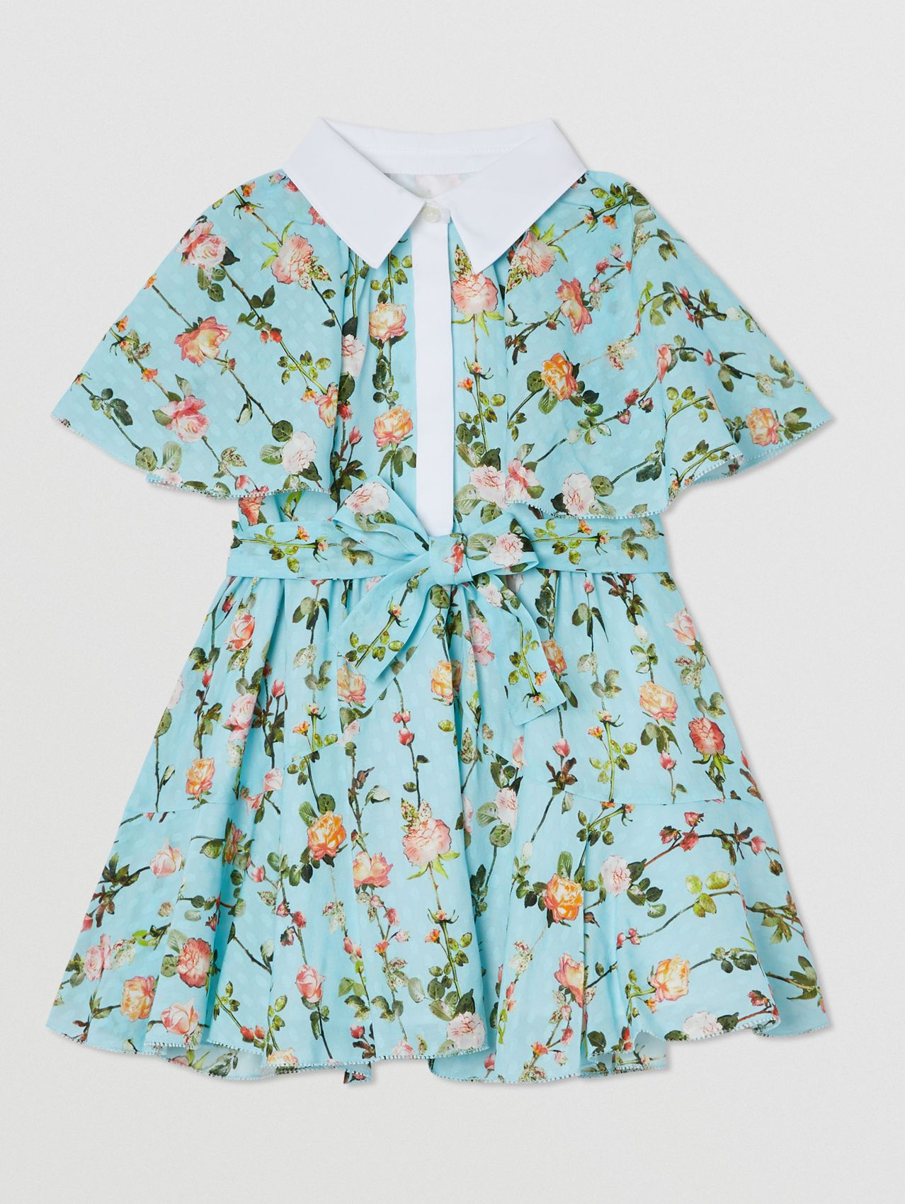 Short-sleeve Cape Detail Rose Print Dress in Blue Topaz