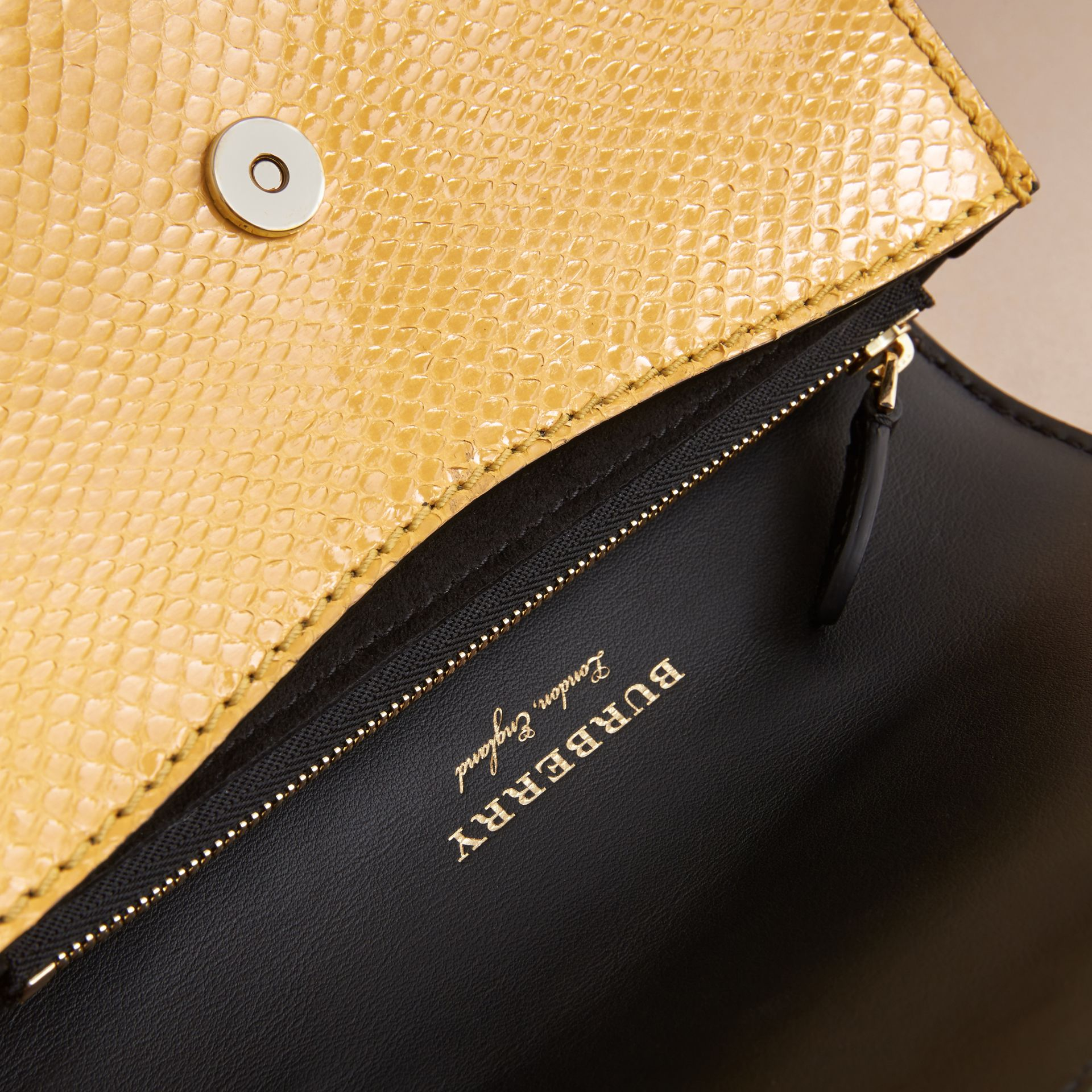 The Small Buckle Bag in Leather and Snakeskin Appliqué - gallery image 6