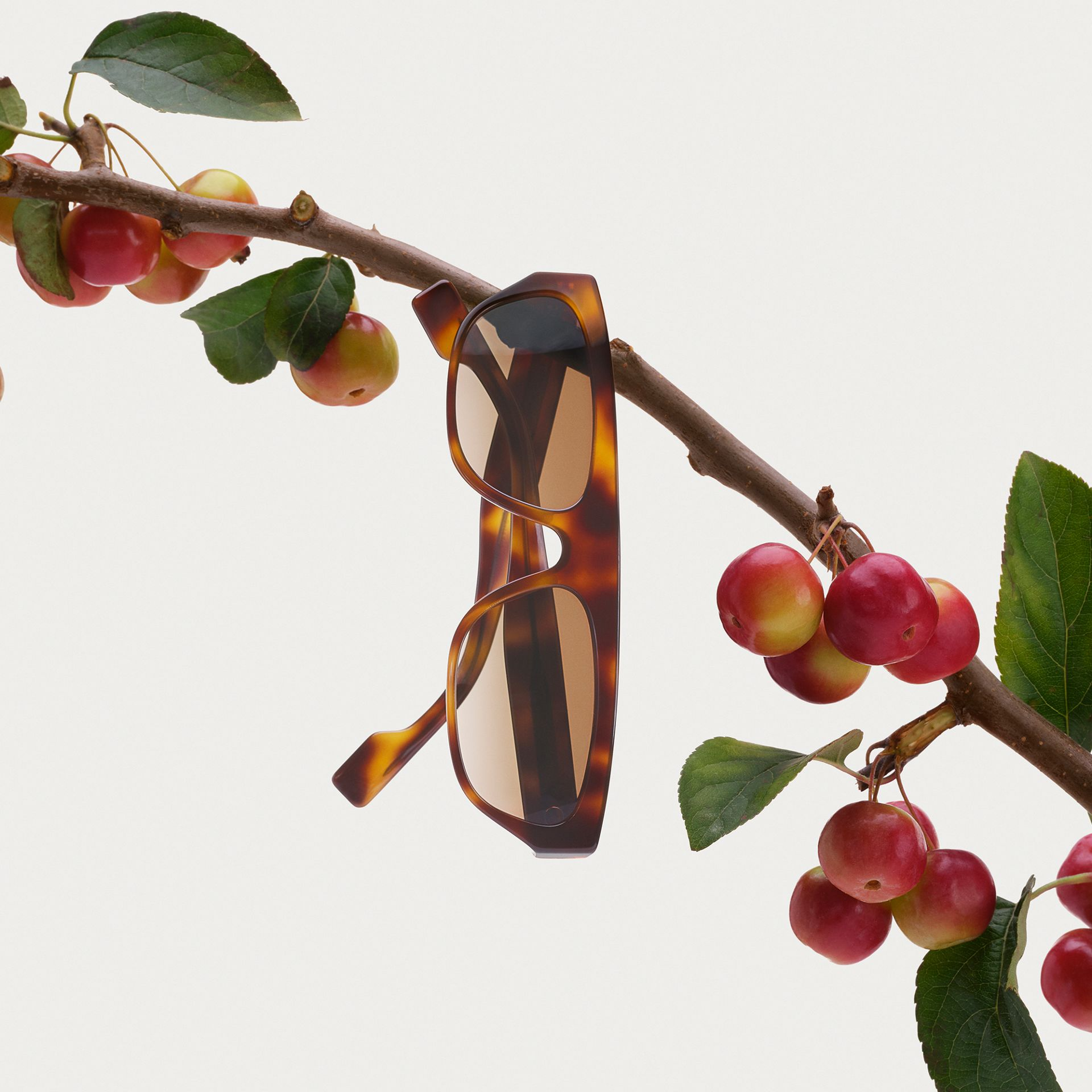 Monogram Motif Rectangular Frame Sunglasses in Amber Tortoiseshell | Burberry - gallery image 1
