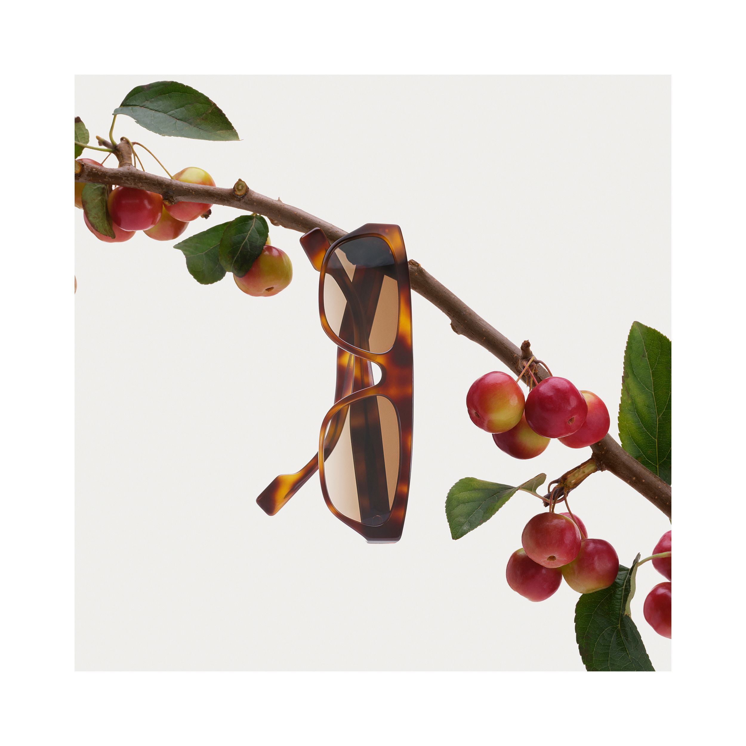 Monogram Motif Rectangular Frame Sunglasses in Amber Tortoiseshell | Burberry - 2