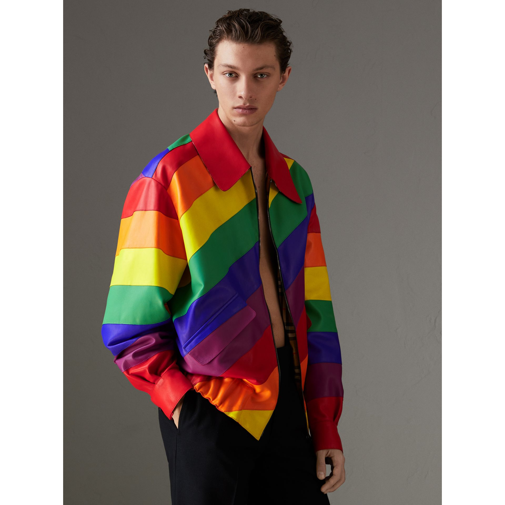 Veste Harrington en cuir nappa arc-en-ciel | Burberry Canada - photo de la galerie 4
