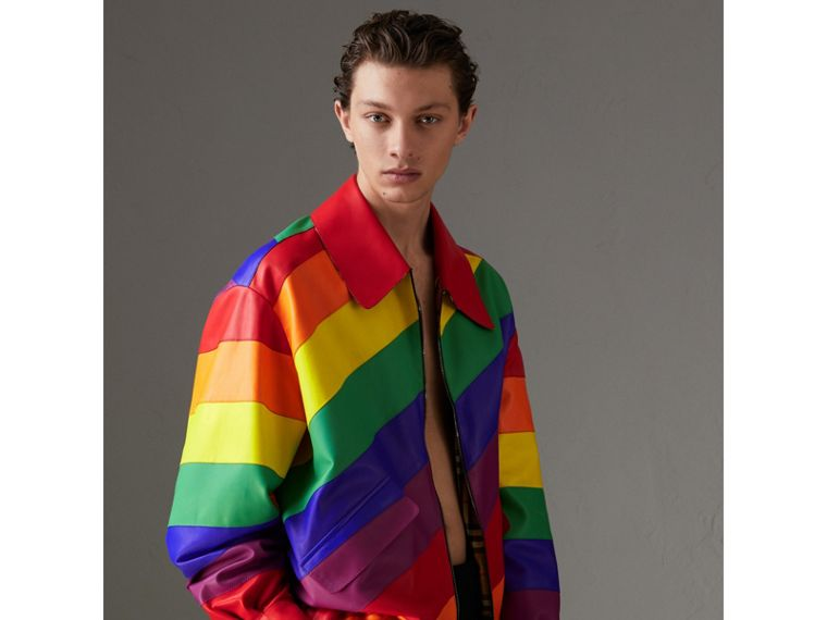 Rainbow Nappa Leather Harrington Jacket | Burberry - cell image 4