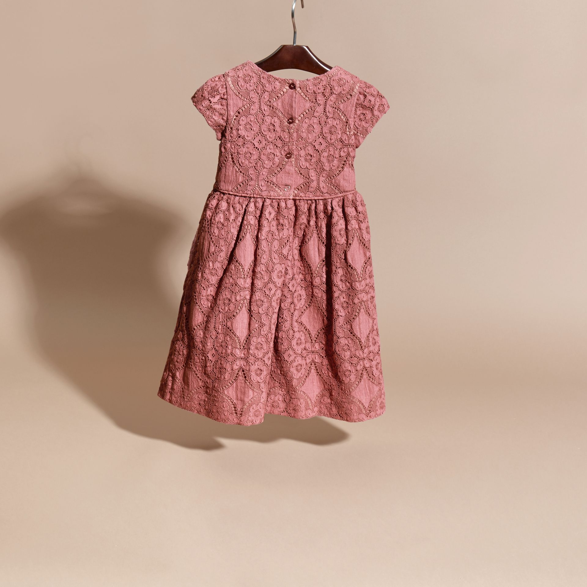 Antique rose English Floral Lace Dress - gallery image 4