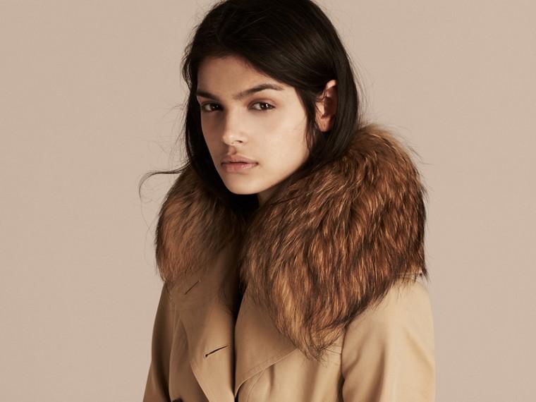 Miel Trench-coat en gabardine de coton avec col amovible en fourrure de raton laveur - cell image 4