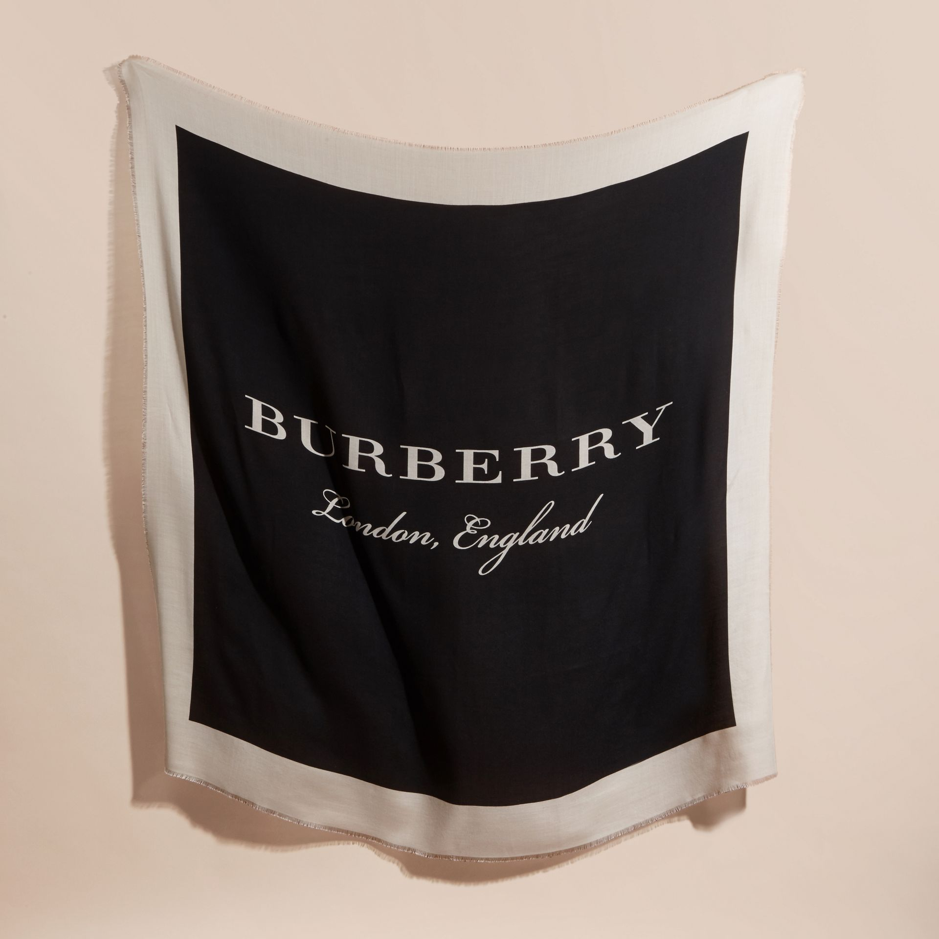 Burberry Print Cashmere Blend Scarf Black/stone - gallery image 6