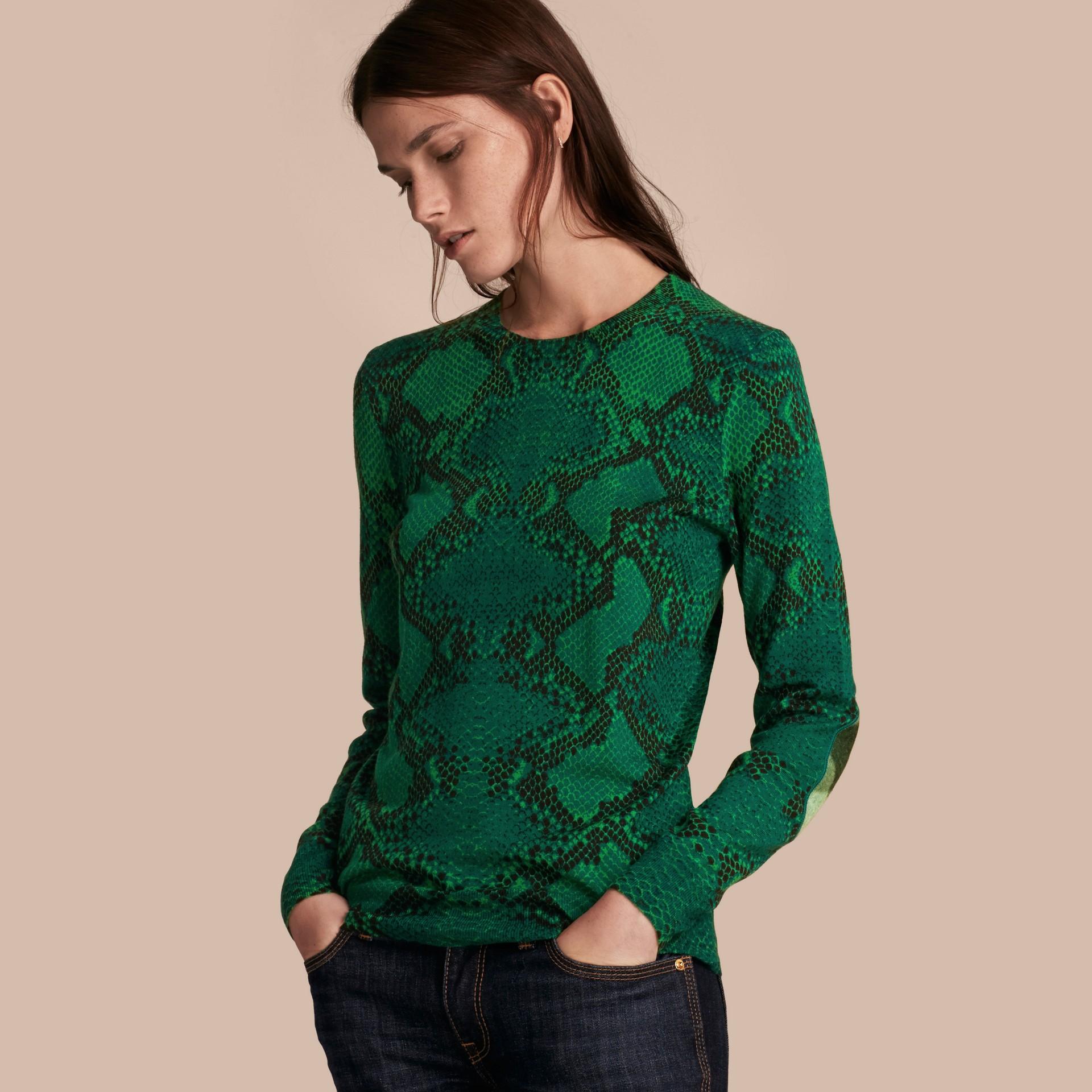 顏料綠 格紋裝飾蟒紋美麗諾羊毛套頭衫 顏料綠 - 圖庫照片 1