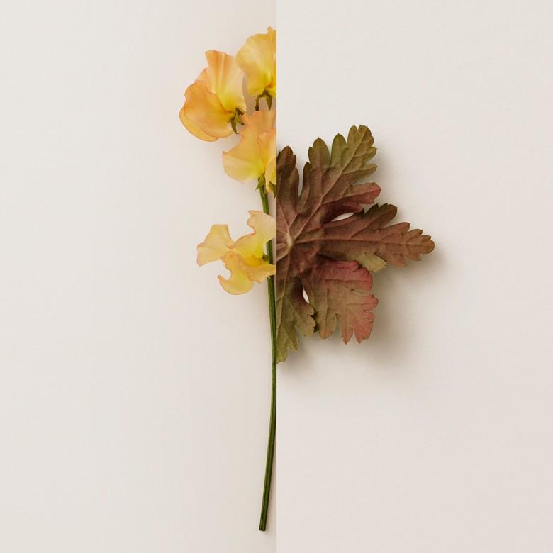 Burberry - Eau de Parfum My  90ml - 4