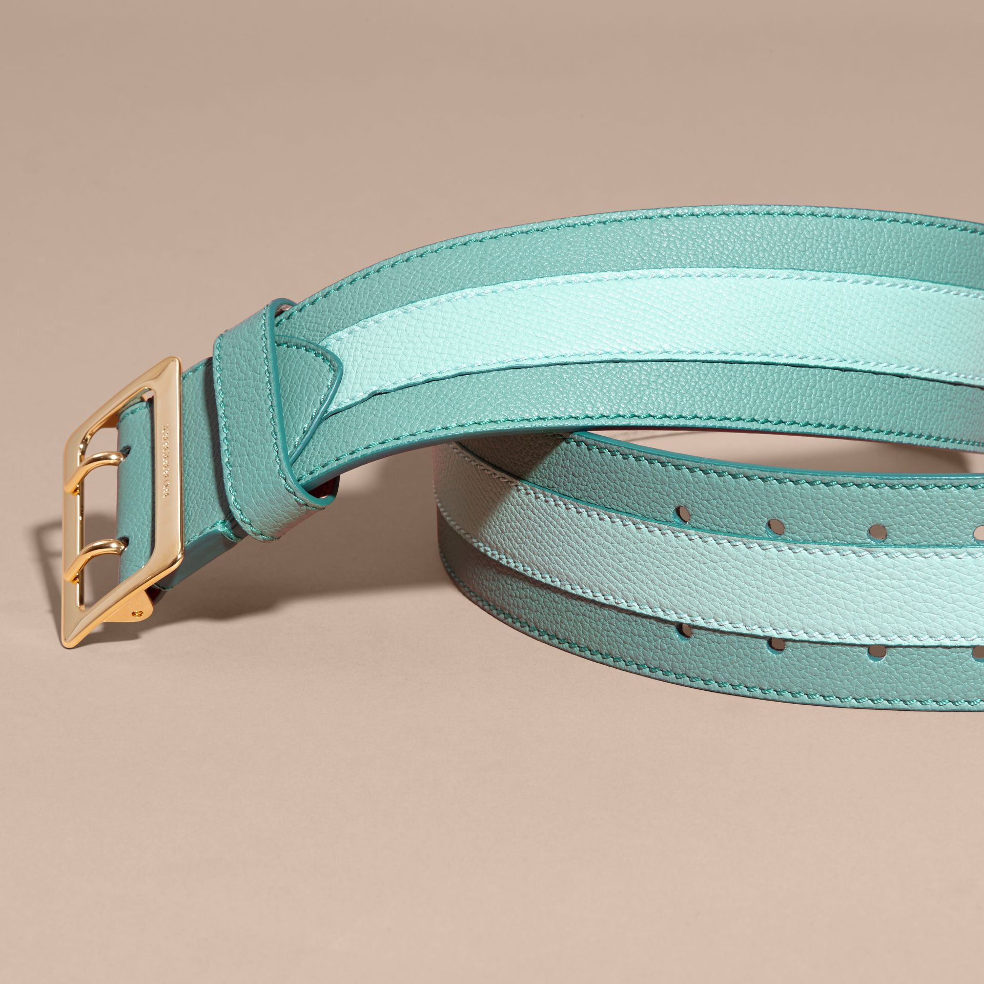Celadon blue Appliquéd Textured Suede and Leather Belt Celadon Blue - gallery image 3