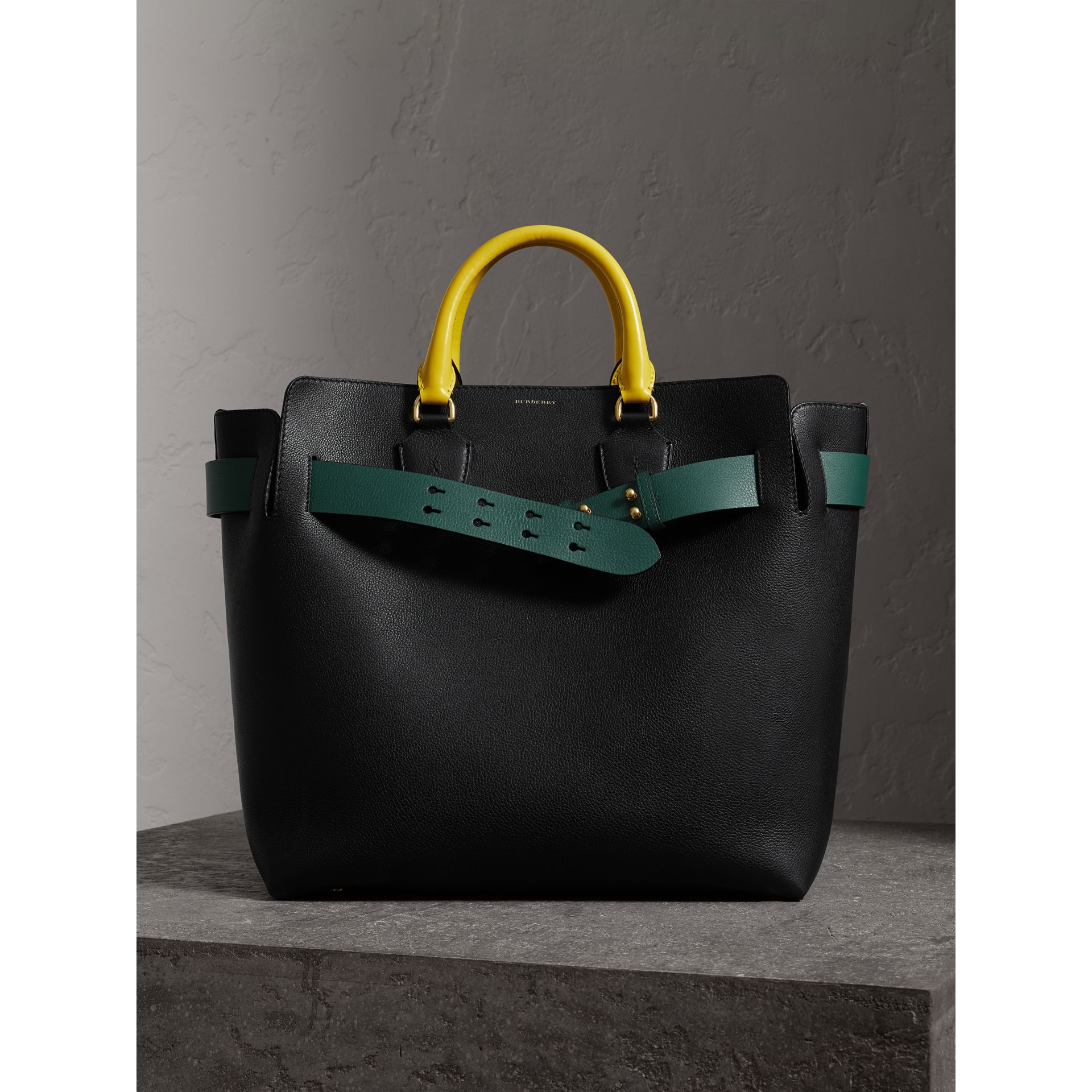 Grand sac The Belt en cuir tricolore (Noir/vert Marin) | Burberry - photo de la galerie 0