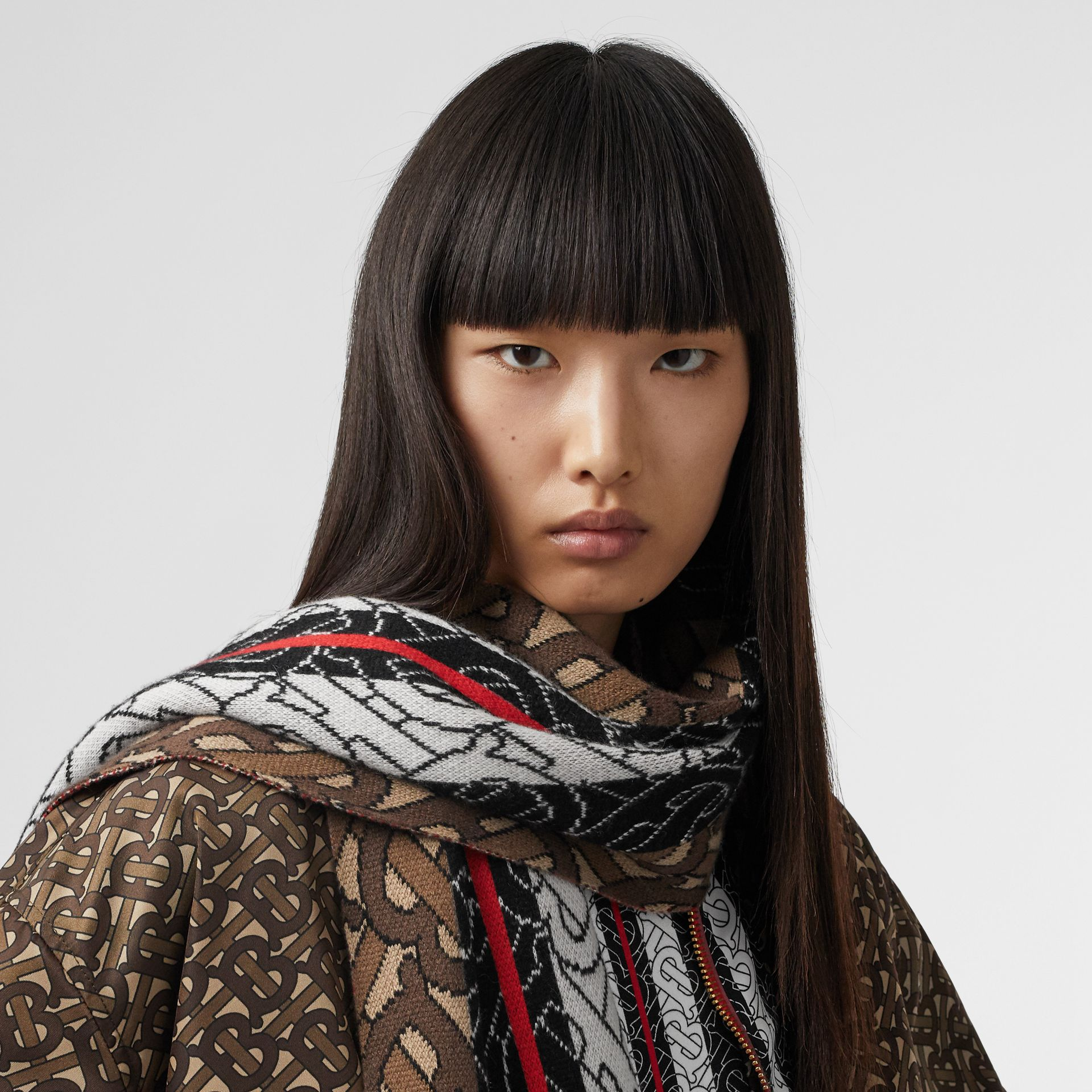 Monogram Stripe Cashmere Scarf in Brown | Burberry Singapore - gallery image 2