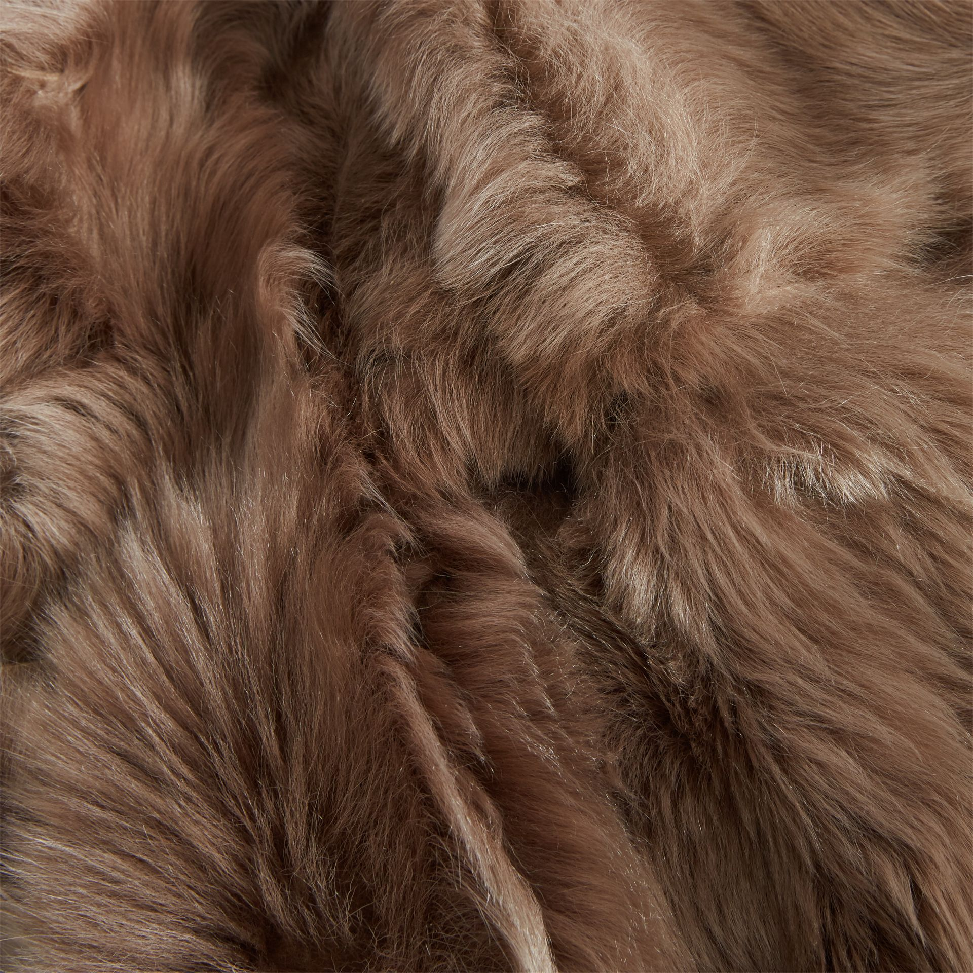 Shearling Car Coat in Camel - Women | Burberry - gallery image 5