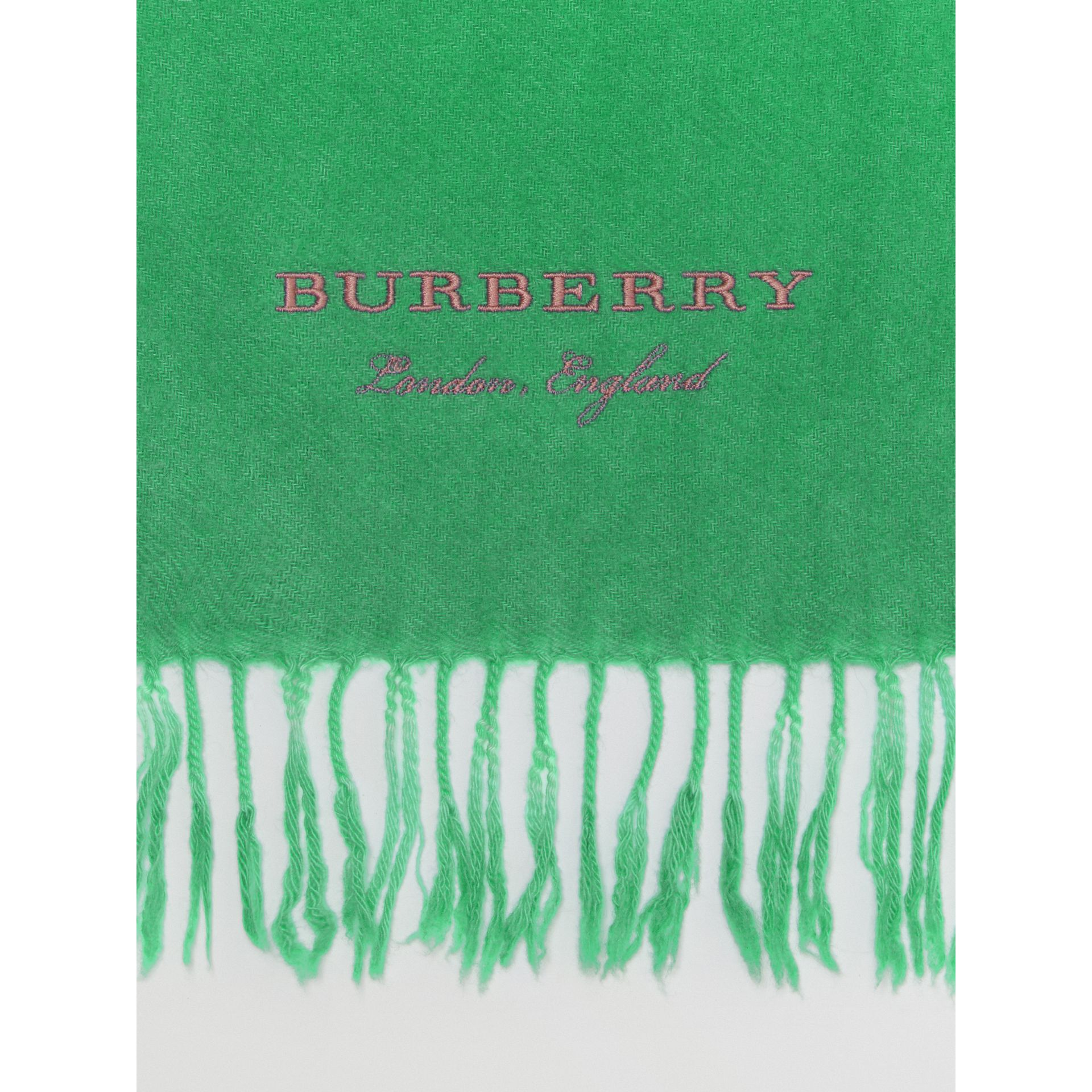 Embroidered Cashmere Fleece Scarf in Tourmaline Green | Burberry - gallery image 1