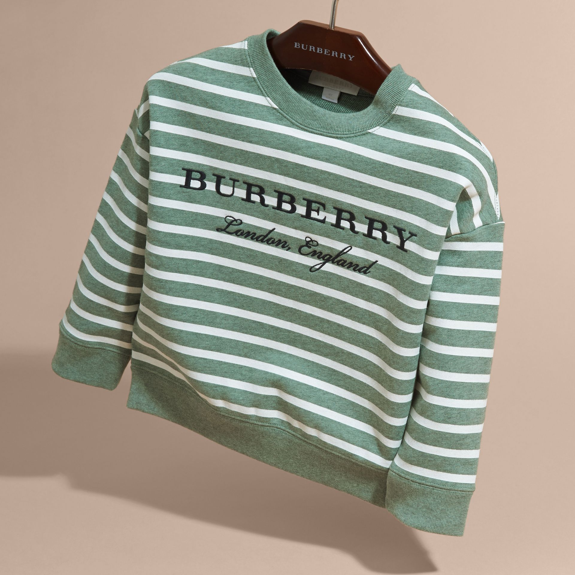 Striped Cotton Sweatshirt Pale Opal Melange - gallery image 3