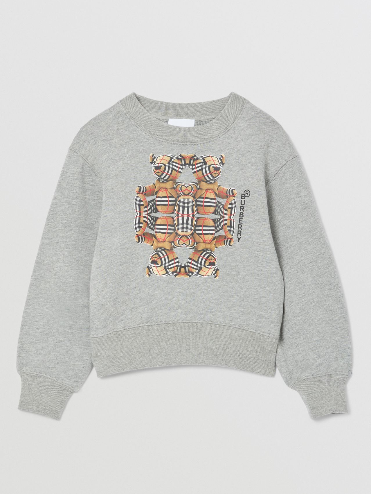 Thomas Bear Motif Cotton Sweatshirt in Grey Melange