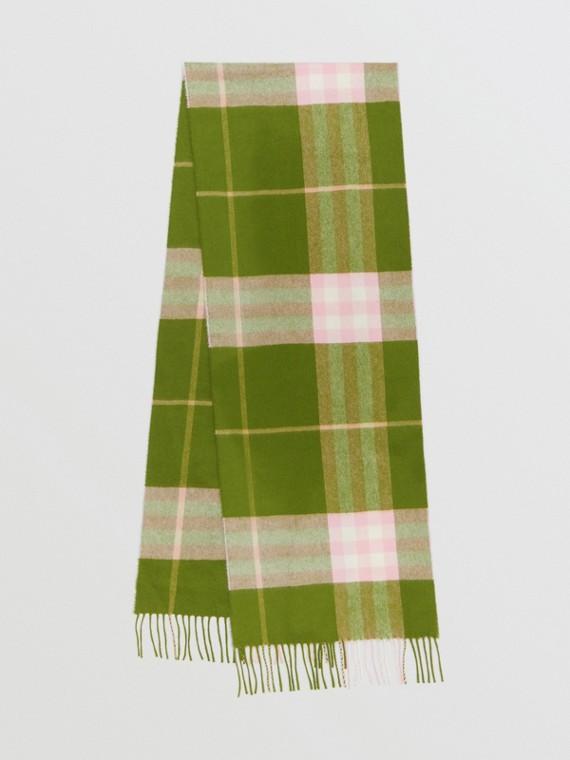 Écharpe classique en cachemire check (Vert Cèdre)