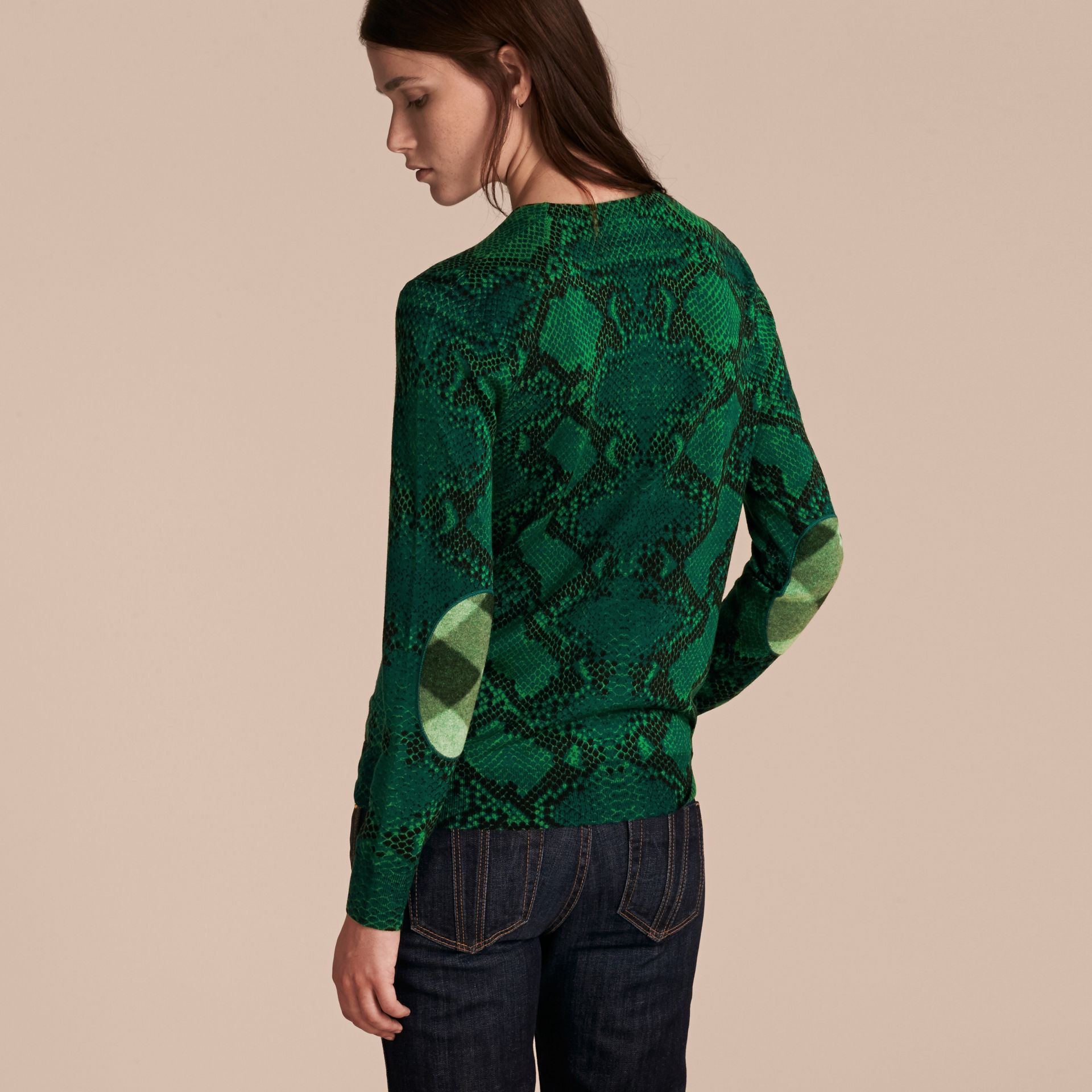 顏料綠 格紋裝飾蟒紋美麗諾羊毛套頭衫 顏料綠 - 圖庫照片 3