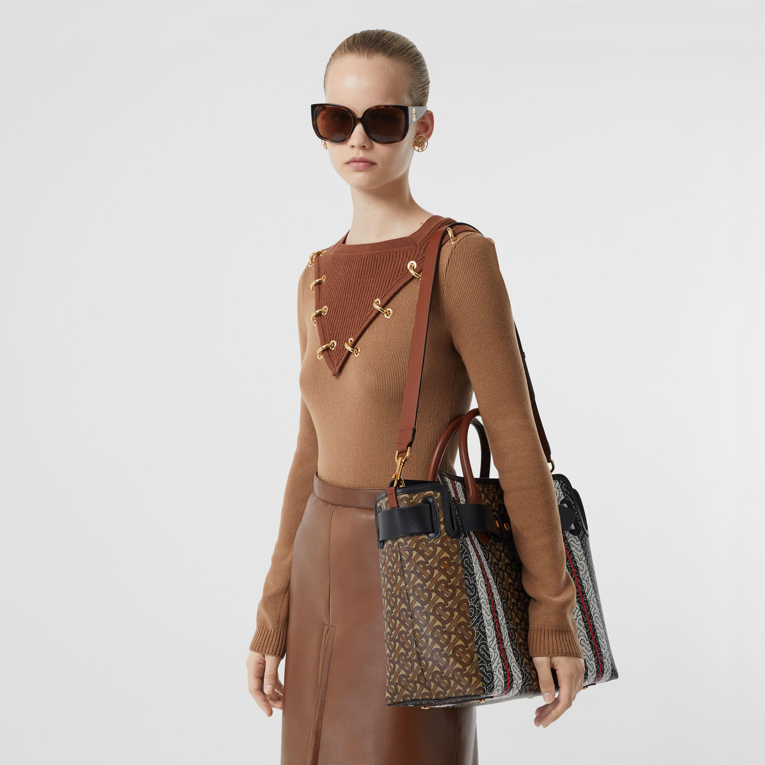 The Medium Monogram Stripe E-canvas Belt Bag in Bridle Brown - Women | Burberry - 3
