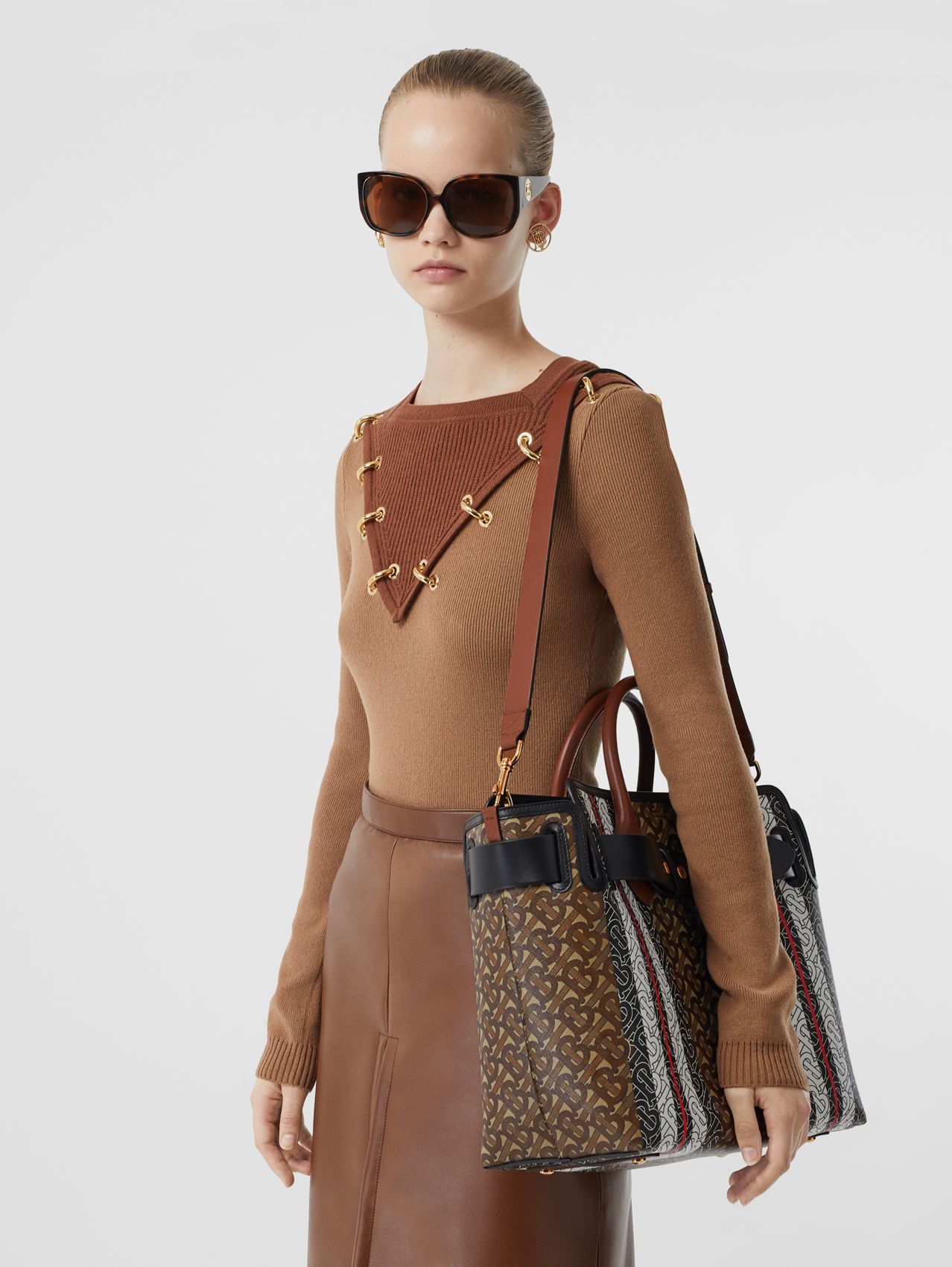 The Medium Monogram Stripe E-canvas Belt Bag in Bridle Brown