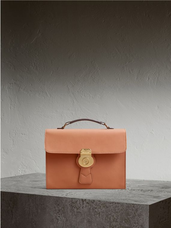 The DK88 Portfolio Case in Pale Clementine - Men | Burberry