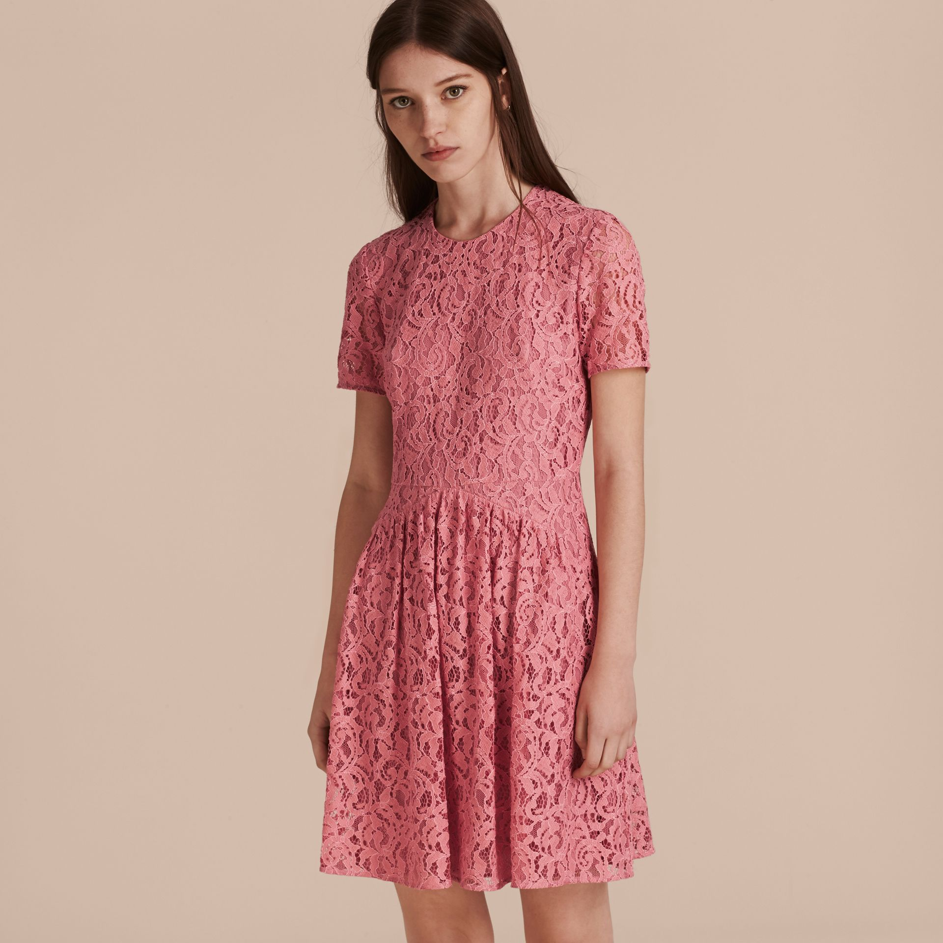 Fit-and-flare Dropped-waist Lace Dress in Antique Rose - gallery image 6