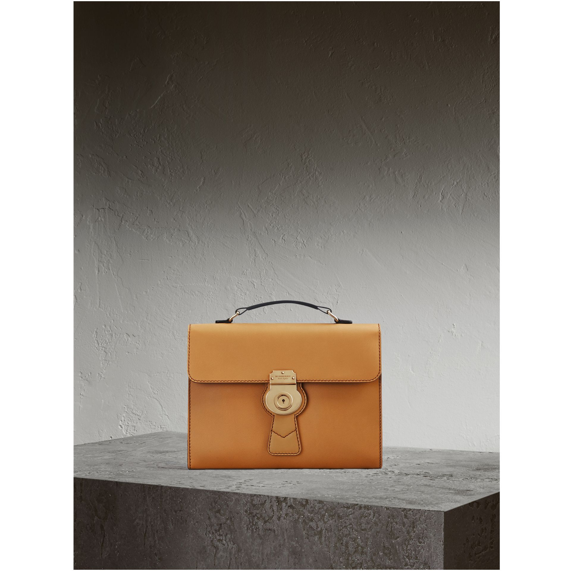 The DK88 Document Case in Ochre Yellow - Men | Burberry - gallery image 0