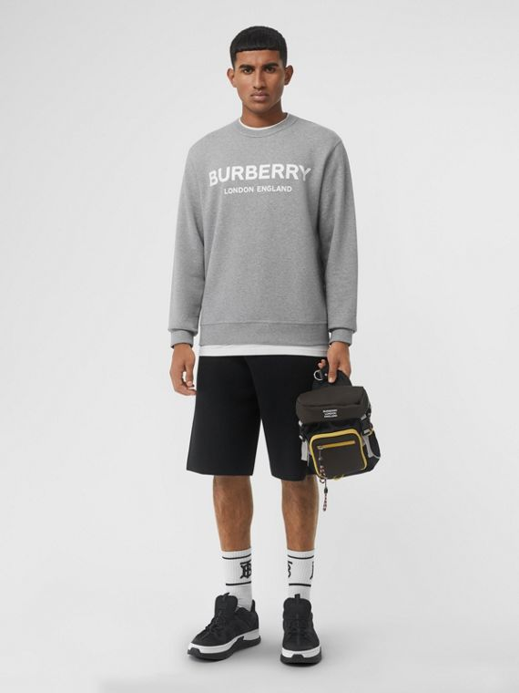 Suéter de algodão com estampa de logo (Cinza Claro Mesclado)