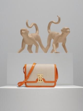 TB Bag