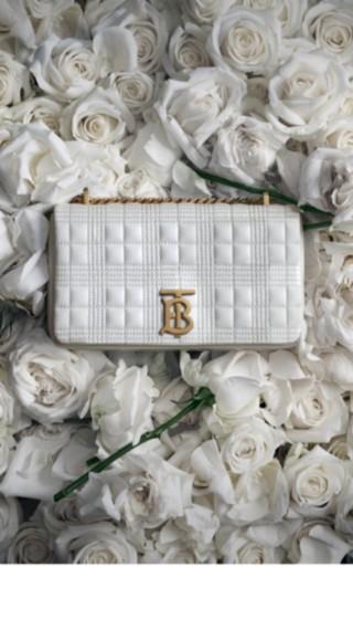 Bags in Bloom