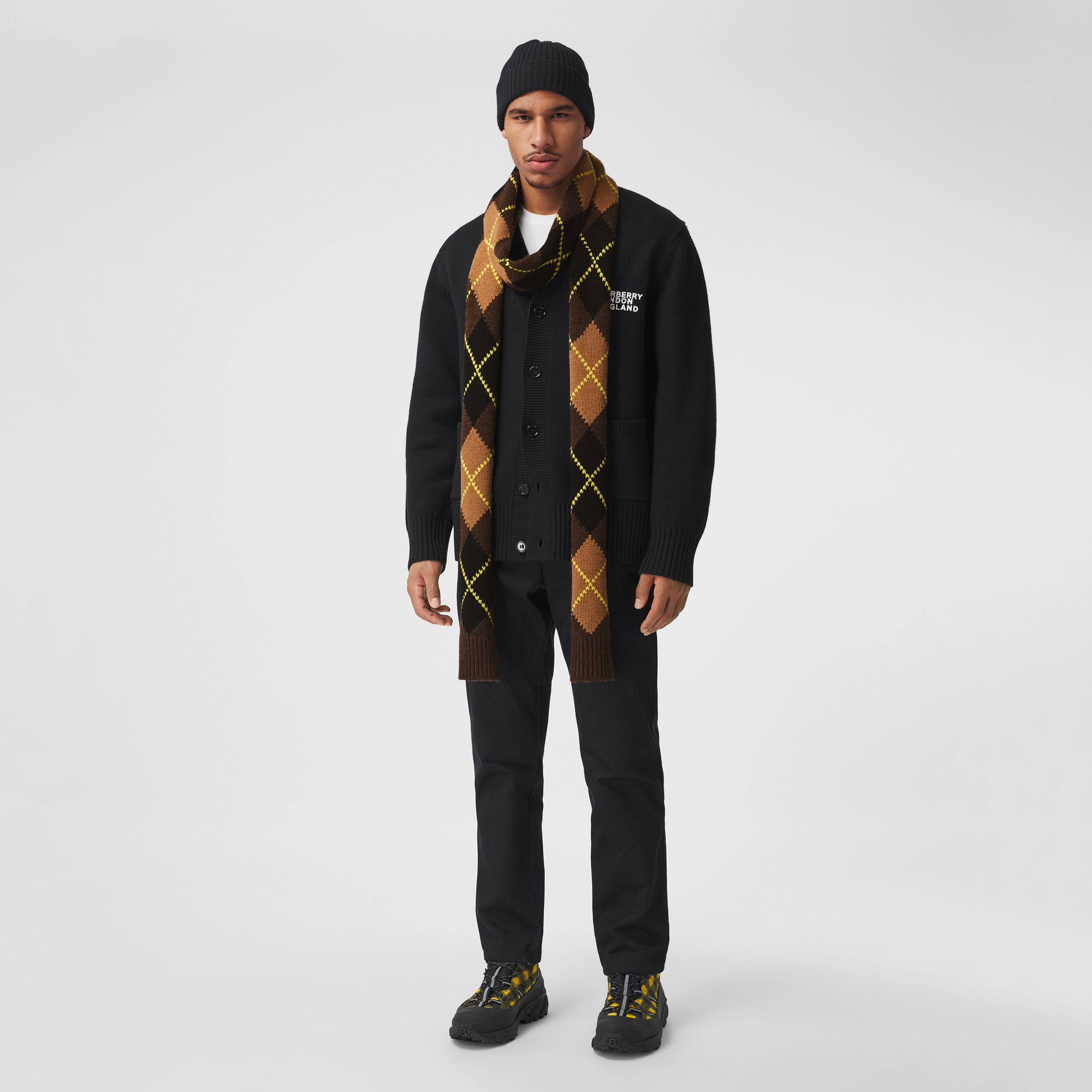 Argyle Intarsia Wool Cashmere Scarf in Brown | Burberry - 4