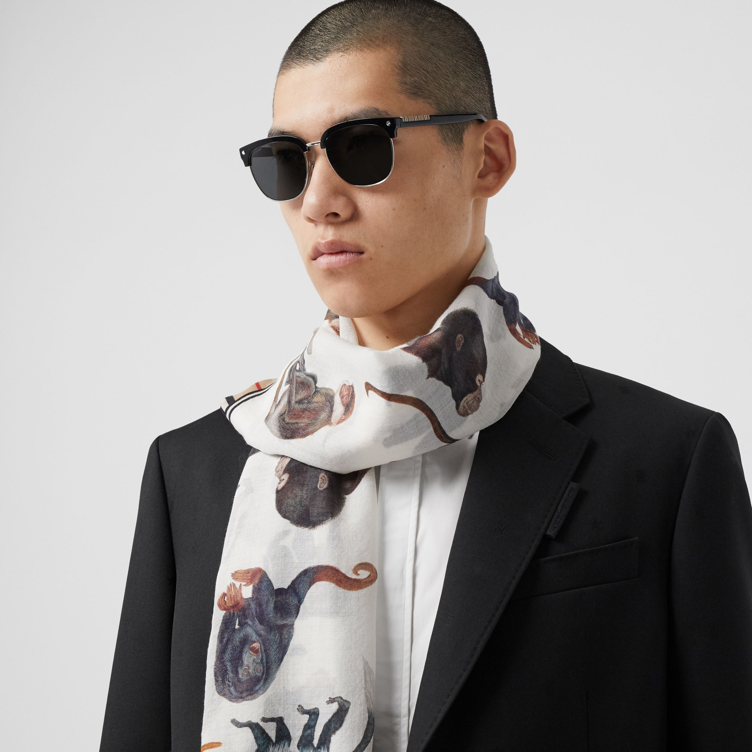 Icon Stripe and Monkey Print Wool Silk Scarf in Archive Beige | Burberry - 4