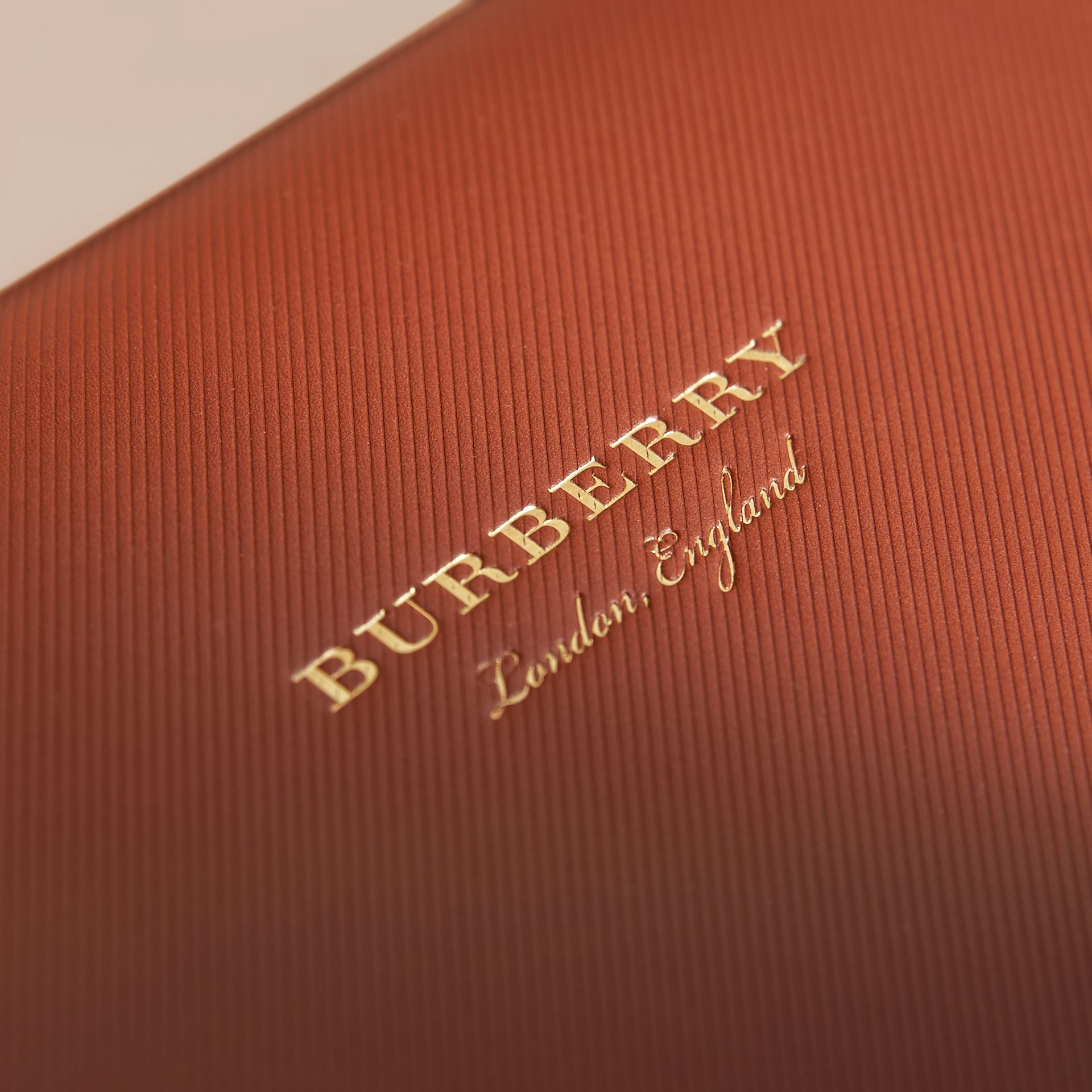 The DK88 Document Case in Tan - Men | Burberry Canada - gallery image 5