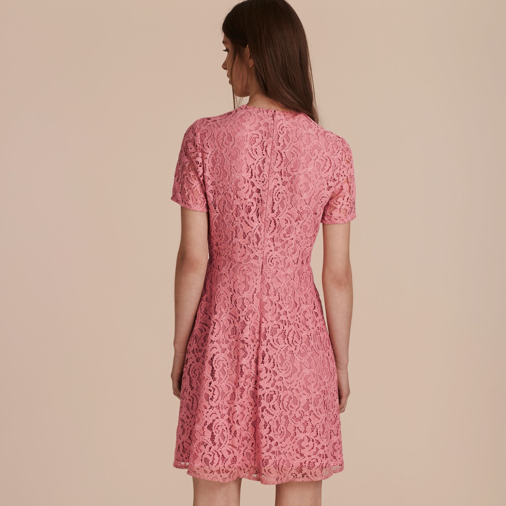 Fit-and-flare Dropped-waist Lace Dress in Antique Rose - gallery image 3