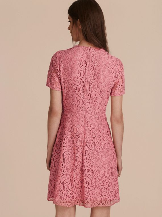 Fit-and-flare Dropped-waist Lace Dress in Antique Rose - cell image 2