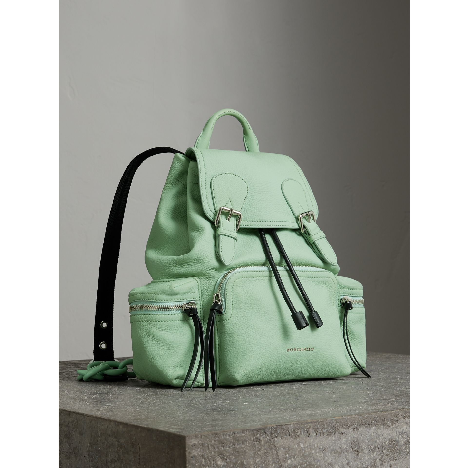 The Medium Rucksack in Deerskin with Resin Chain in Spearmint - Women | Burberry - gallery image 0