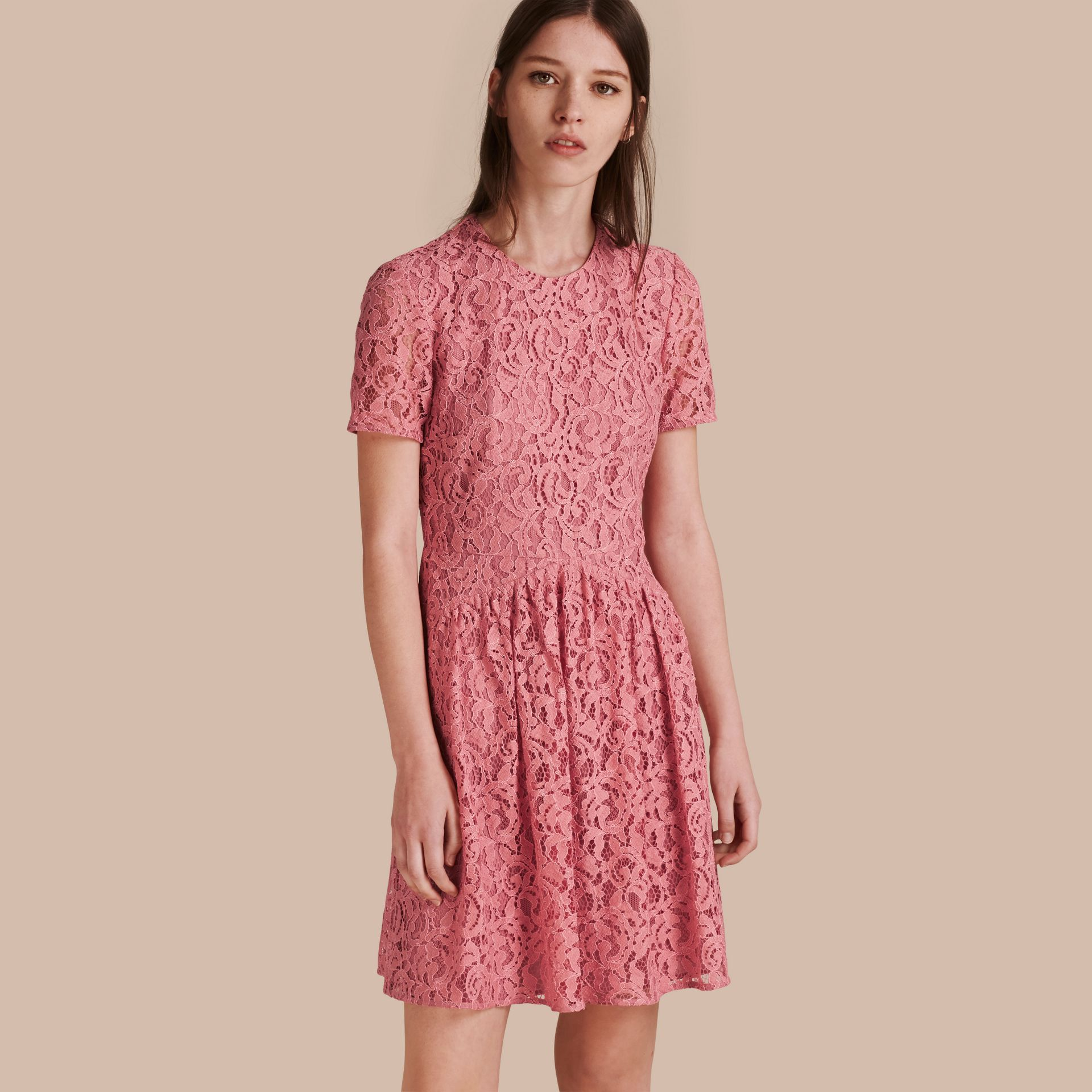 Fit-and-flare Dropped-waist Lace Dress in Antique Rose - gallery image 1