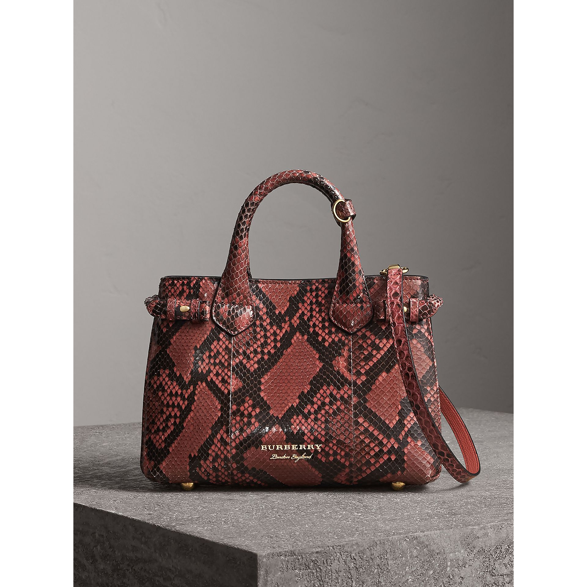 The Small Banner in Python in Peony - Women | Burberry - gallery image 6