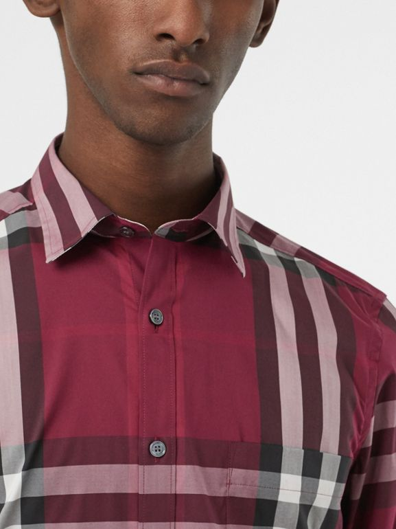Check Stretch Cotton Shirt in Plum - Men | Burberry United States - cell image 1