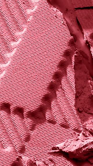 Light Glow – Hydrangea Pink No.10