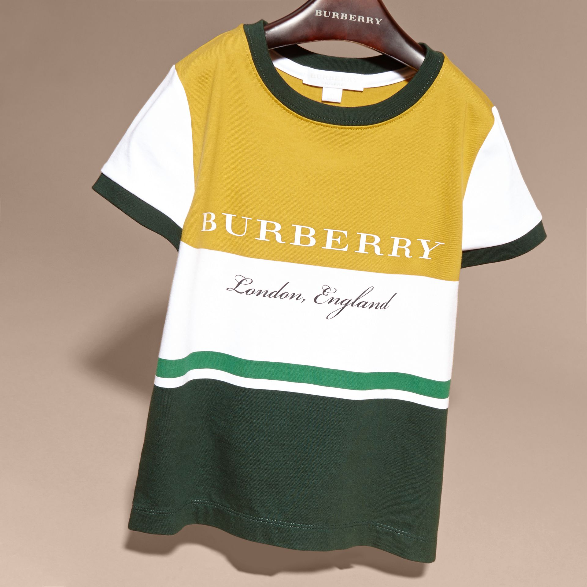 Multi Stripe Cotton T-shirt in Larch Yellow - gallery image 3