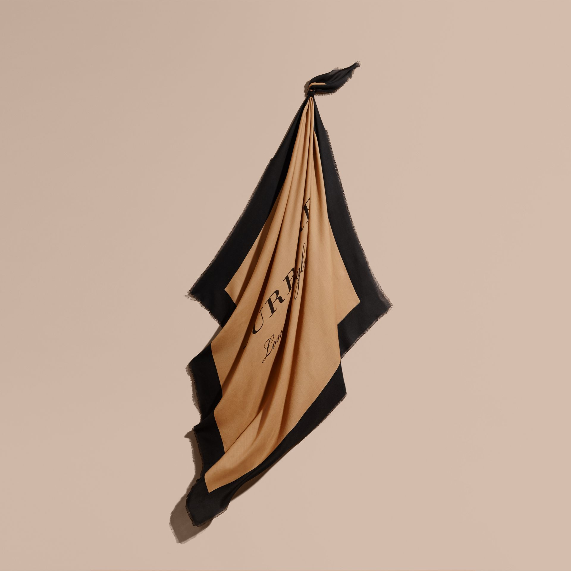 Burberry Print Cashmere Blend Scarf Camel/black - gallery image 1